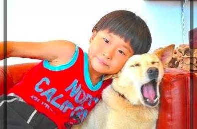 【Aスタ】千原ジュニアとせいじの子供がお互いに似ている?画像で確認!