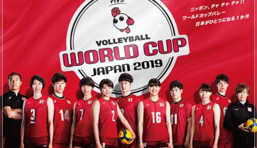 ワールドカップバレー2019・全日本女子代表メンバーのプロフィールや経歴を総まとめ!注目選手は誰?